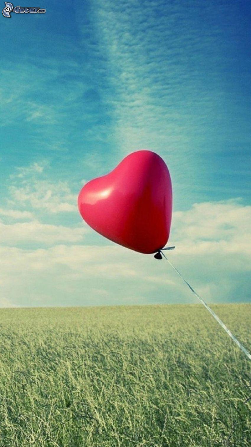 balon, serduszko, łąka