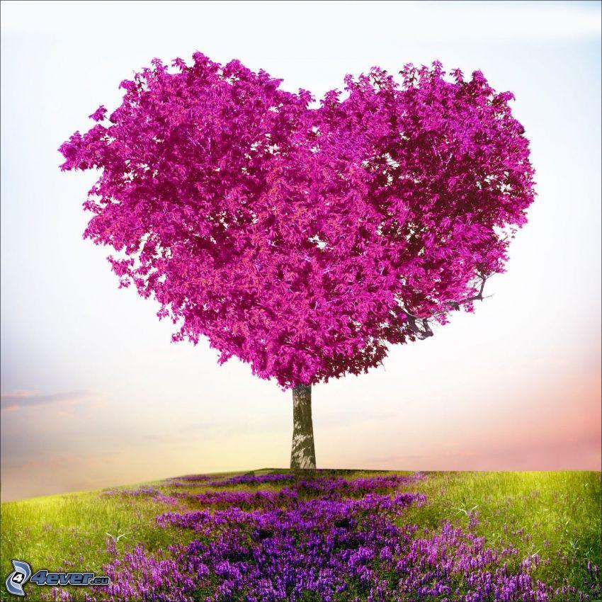 fioletowe drzewo, serduszko