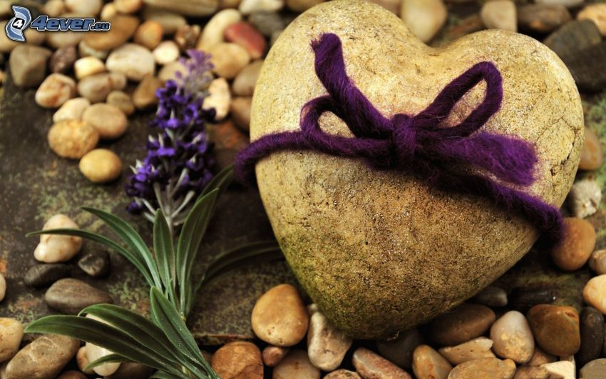 kamienne serce, wstążka, fioletowy kwiat, kamyczki