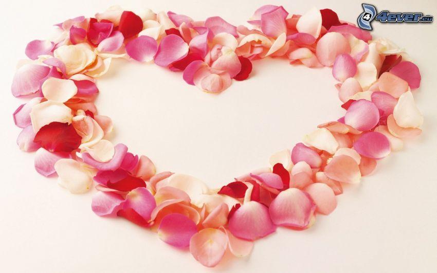 serce z płatków, miłość