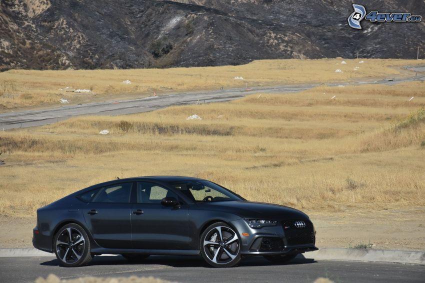Audi RS7, łąka, polna droga