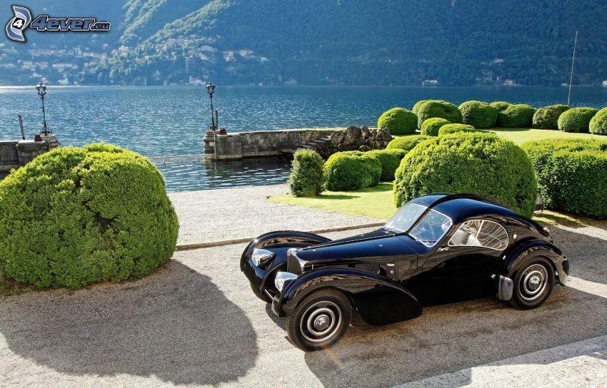 Bugatti, weteran, krzewy, jezioro