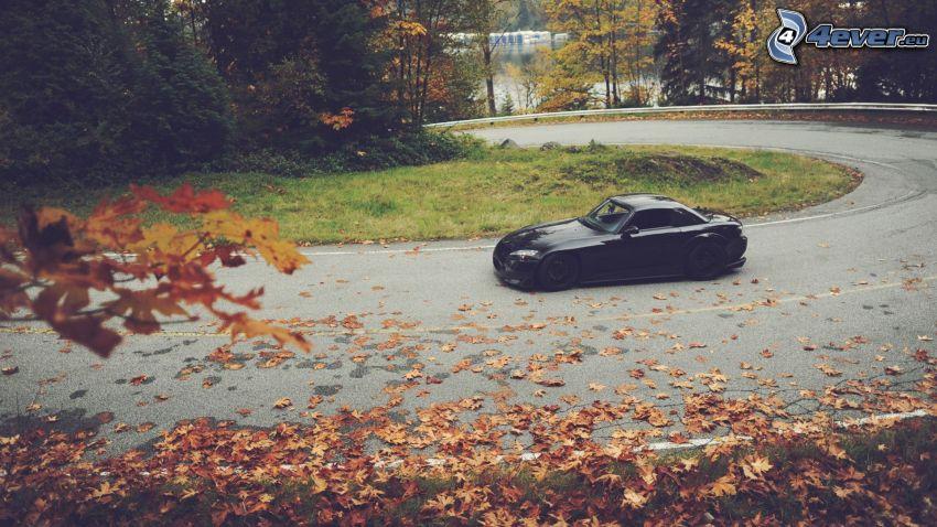 Honda S2000, ulica, opadnięte liście