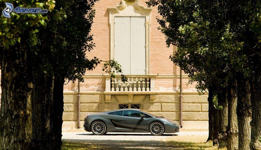 Lamborghini, drzewa