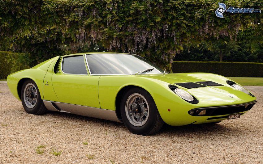 Lamborghini Miura, weteran