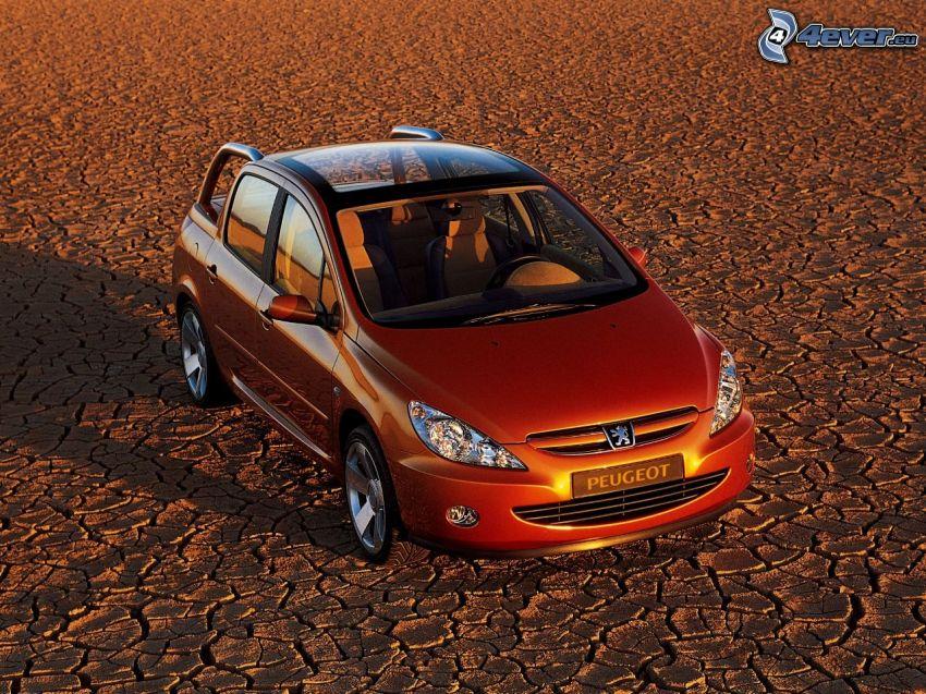Peugeot, pickup truck, panoramiczny dach, sucha ziemia