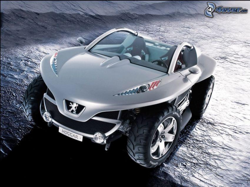 Peugeot Hoggar, projekt