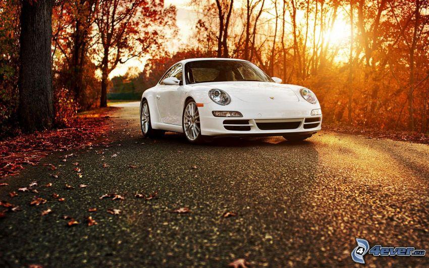 Porsche 911 Carrera S, opadnięte liście, zachód słońca w lesie