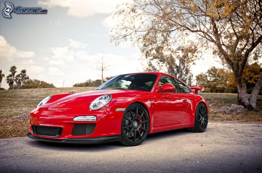 Porsche 911 GT3, jesienne drzewa