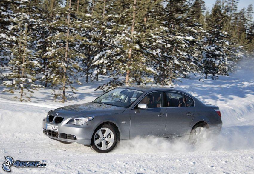 BMW 5, śnieg, drzewa iglaste