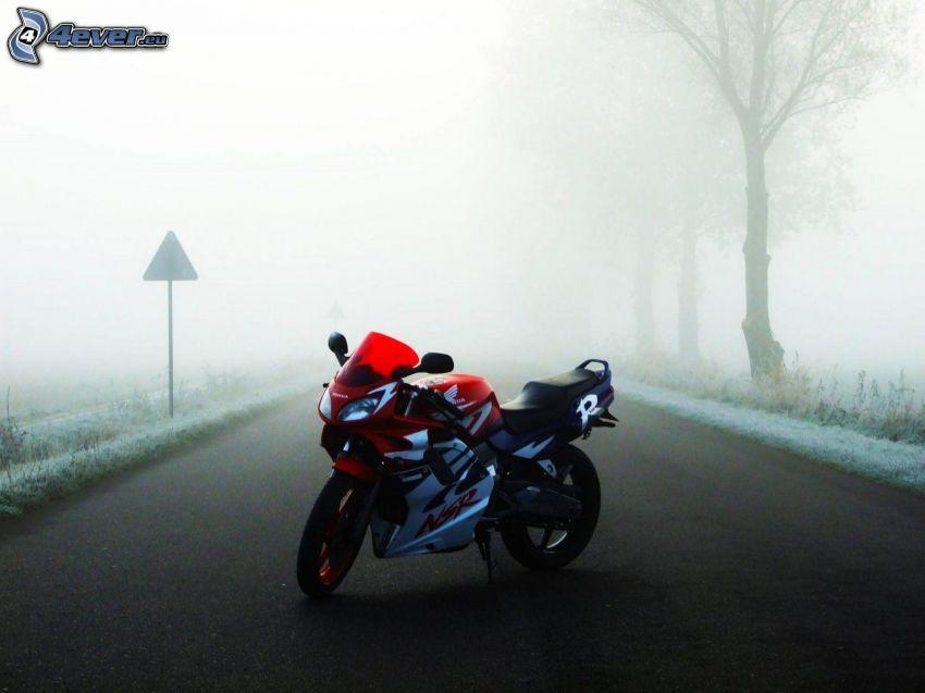 Honda NSR, mgła, ulica, aleja drzew, znak drogowy