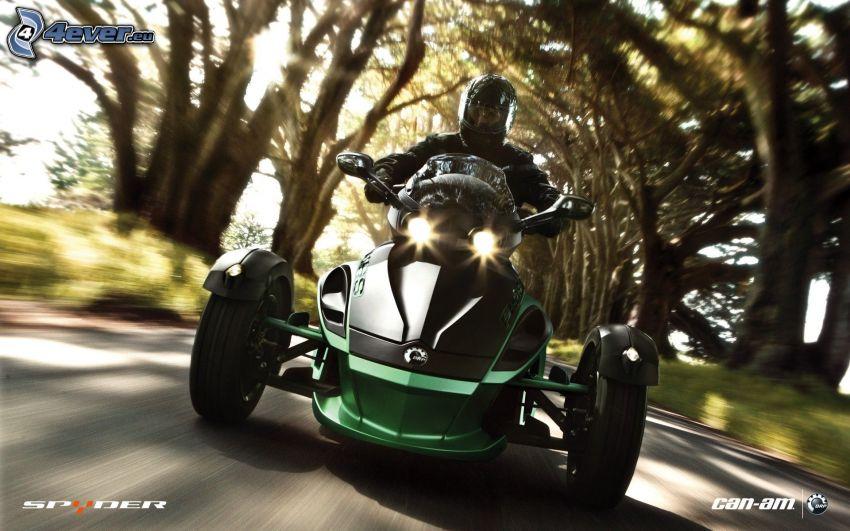 rower trzykołowy, motocyklista, prędkość, drzewa