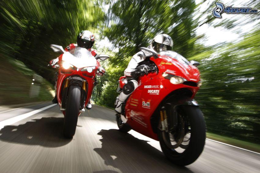 wyścigi, Ducati, motocyklista, prędkość