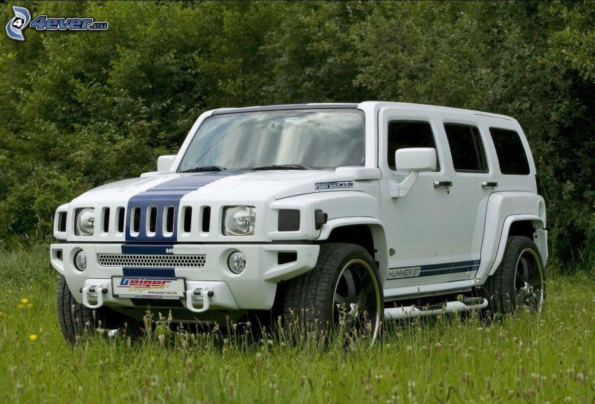Hummer H3, samochód terenowy, łąka