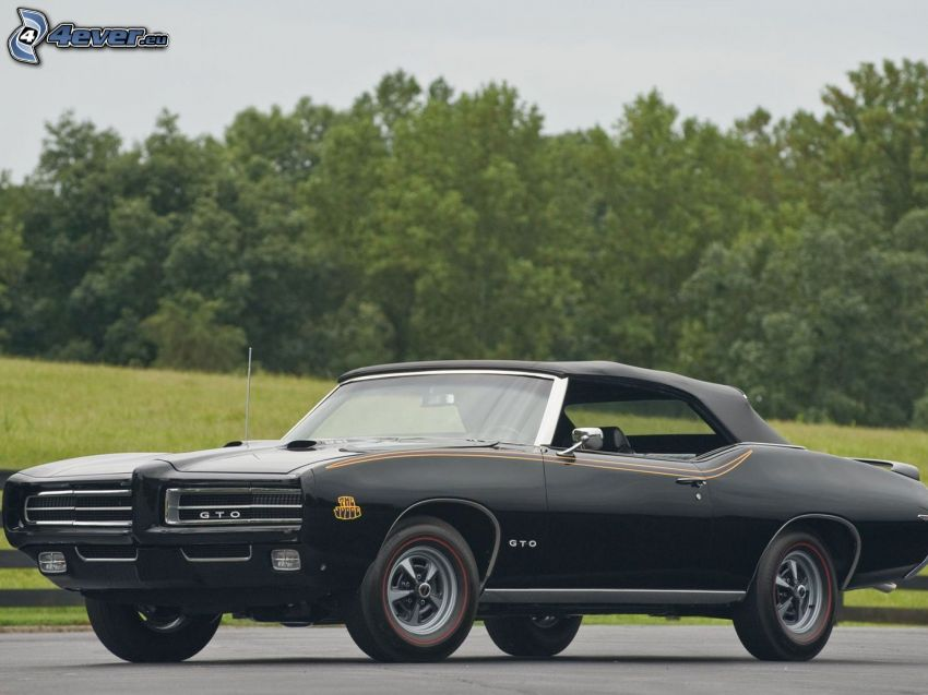 Pontiac GTO, weteran, kabriolet, drzewa