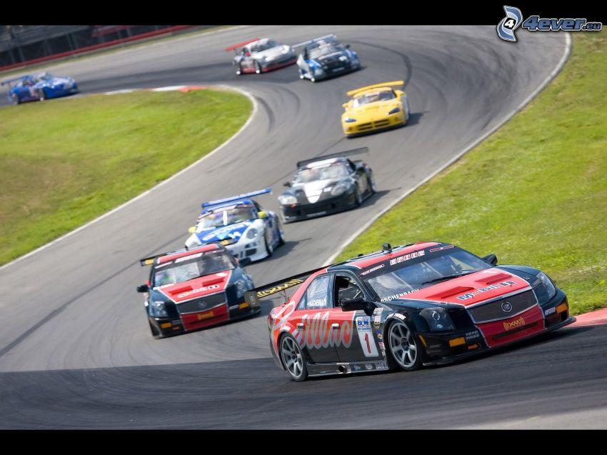 wyścigi, auta wyścigowe, wyścigi, torowe, Cadillac, Porsche