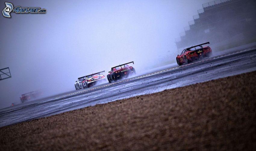 wyścigi, auta wyścigowe