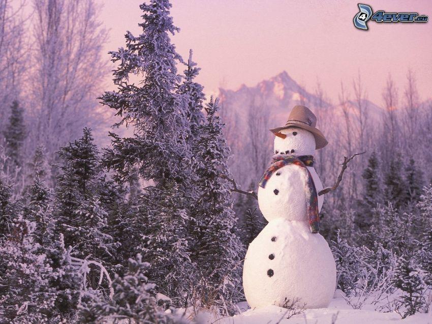 bałwan, zaśnieżony las iglasty