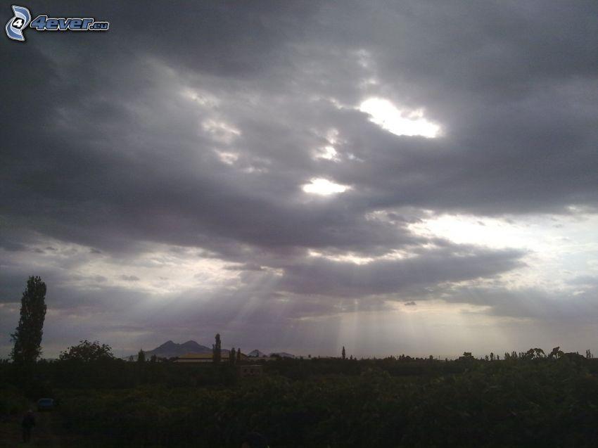 chmury, promienie słoneczne, krzewy