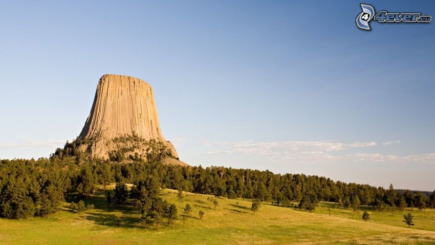 Devils Tower, skała, las, łąka