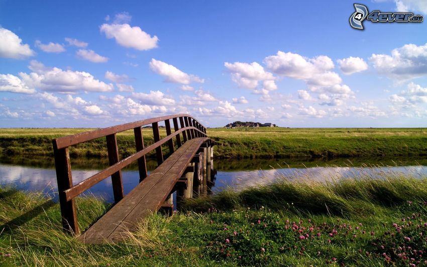 drewniany most, rzeka, łąka