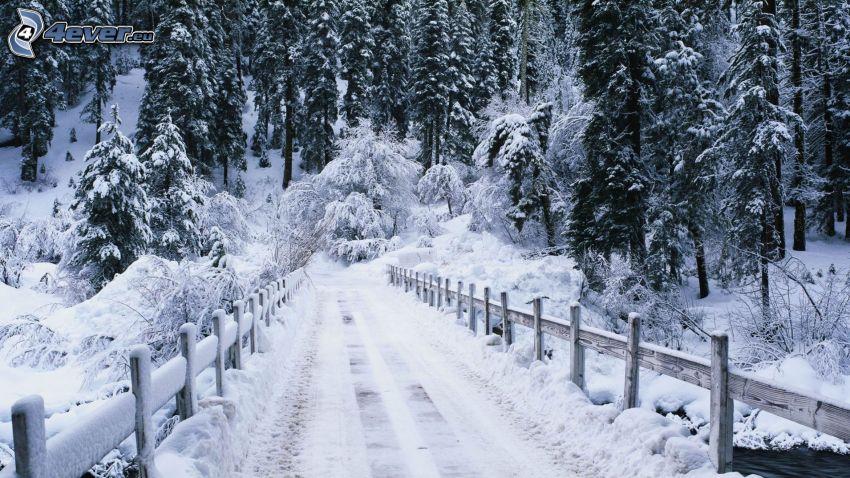 droga zimą, śnieżny krajobraz, most, drewniany płot