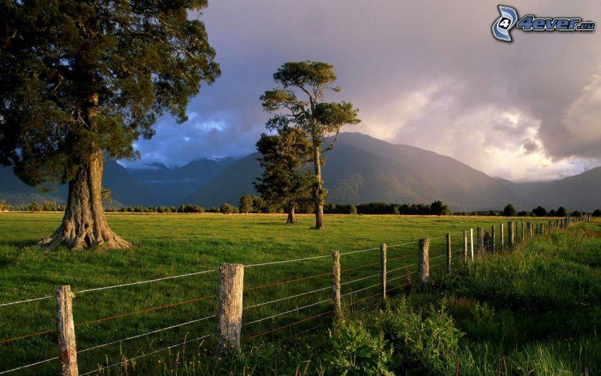 drzewa, ogrodzenie z drutu, pasmo górskie, niebo, łąka