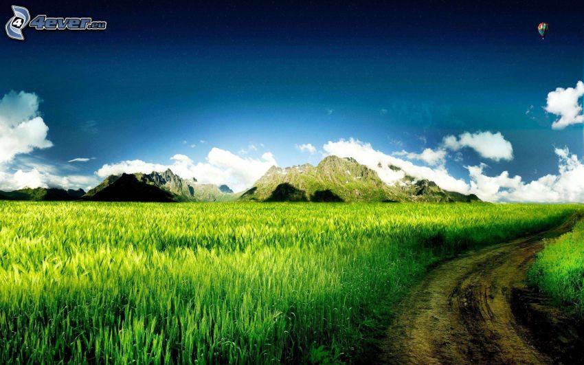 góry skaliste, polna droga, zielone zbożowe pole, latający balon