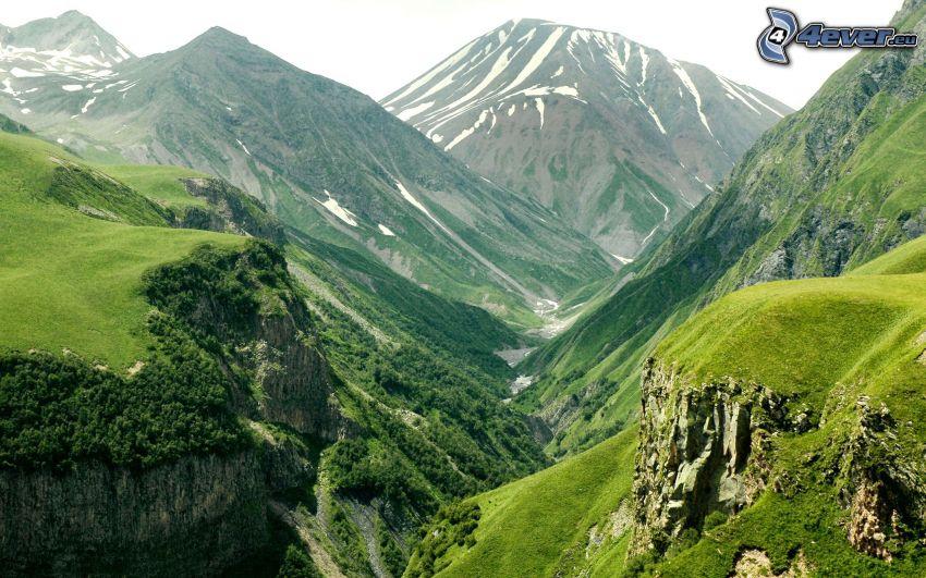 dolina, góry skaliste, trawa, drzewa, zaśnieżone góry