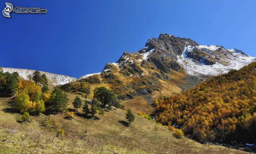 góra skalista, śnieg, żółte drzewa