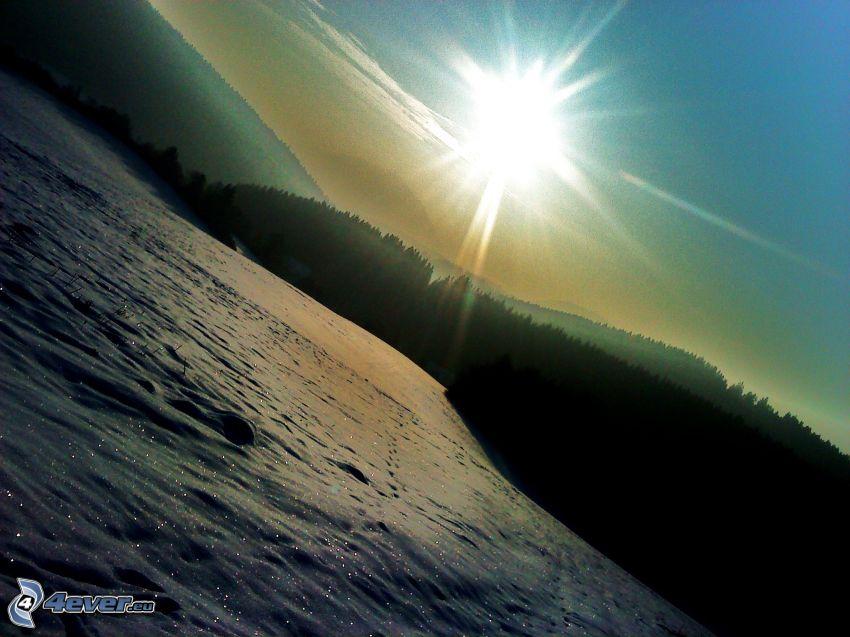 krajobraz, słońce, śnieg, pole, las