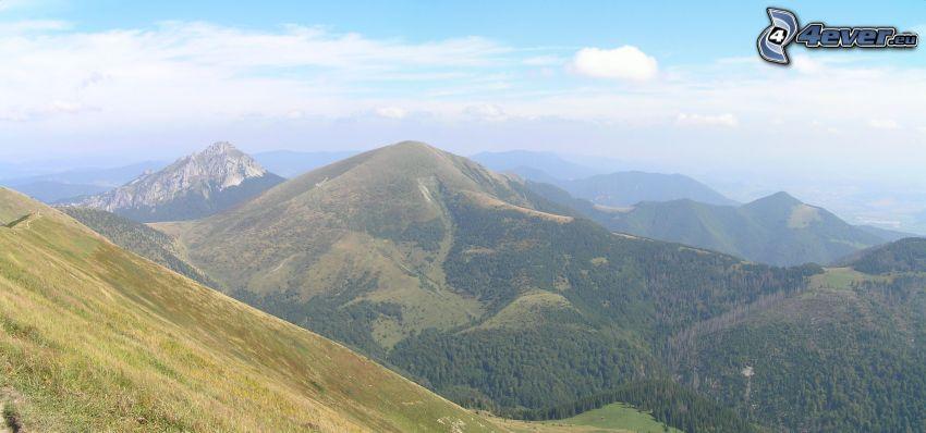 Mały Rozsutec, Słowacja, panorama