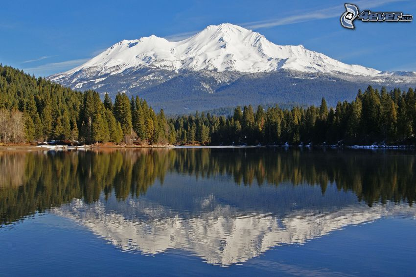 Mount Shasta, górskie jezioro, las, odbicie, zaśnieżona góra