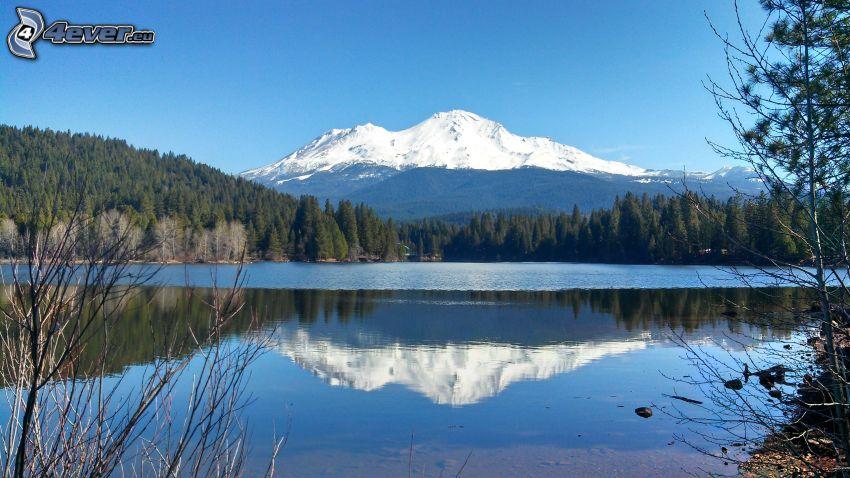 Mount Shasta, zaśnieżona góra, górskie jezioro, las