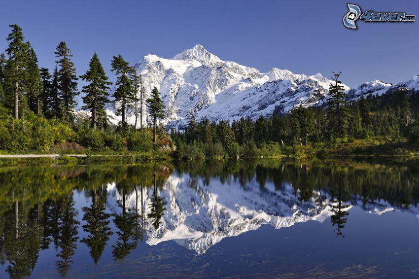 Mount Shuksan, zaśnieżona góra, jezioro, odbicie, las