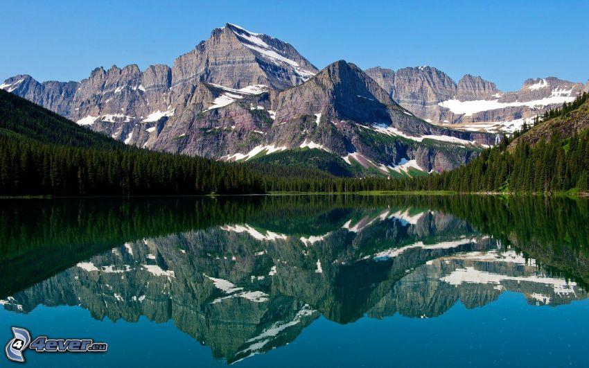 Mount Wilber, jezioro, odbicie, las