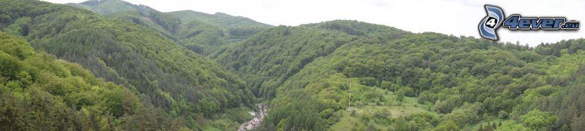 pasmo górskie, dolina, las