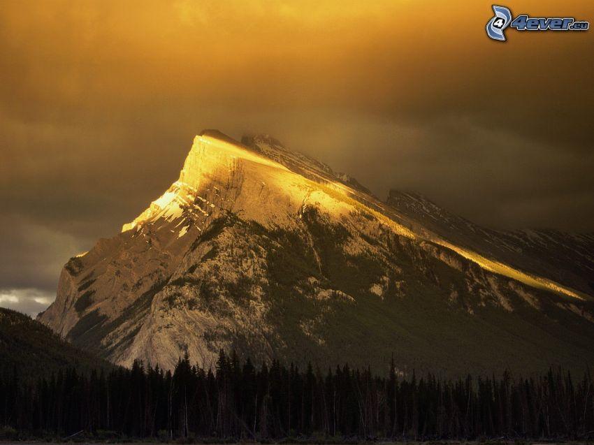 Rundle Mountain, Banff Park Narodowy, śnieg, góra, wzgórze, las iglasty