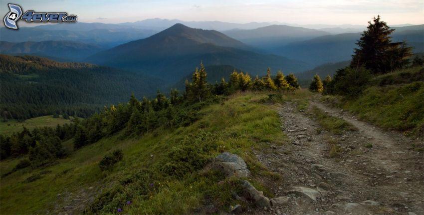 szlak turystyczny, wzgórza, zieleń