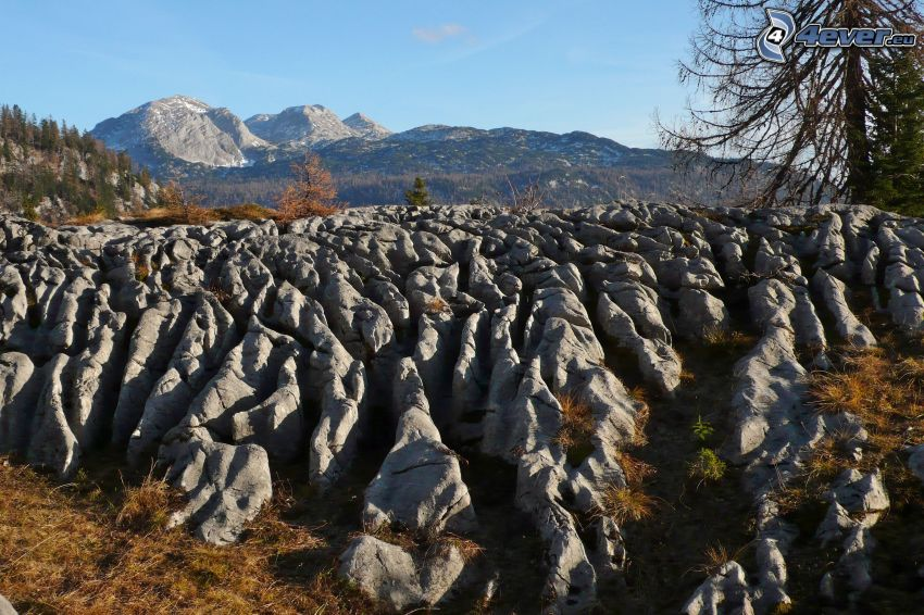 Totes Gebirge, góry skaliste