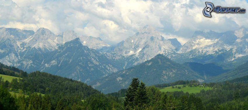 Totes Gebirge, lasy i łąki, góry skaliste