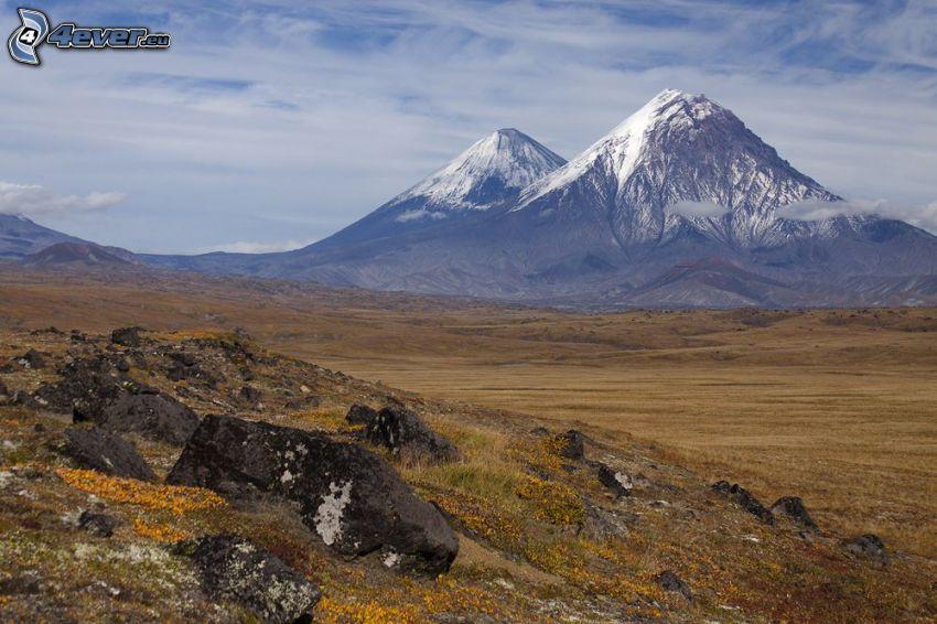 zaśnieżone góry, skały, łąka, żółte kwiaty