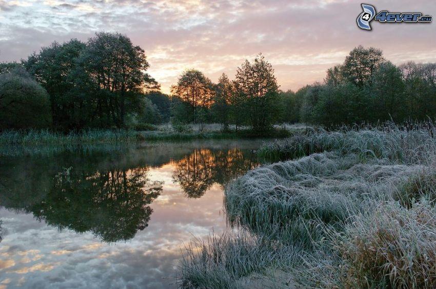 jeziorko, zachód słońca, zamarznięta trawa