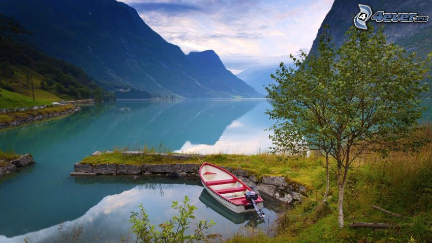 jezioro, łódka, drzewo, góry
