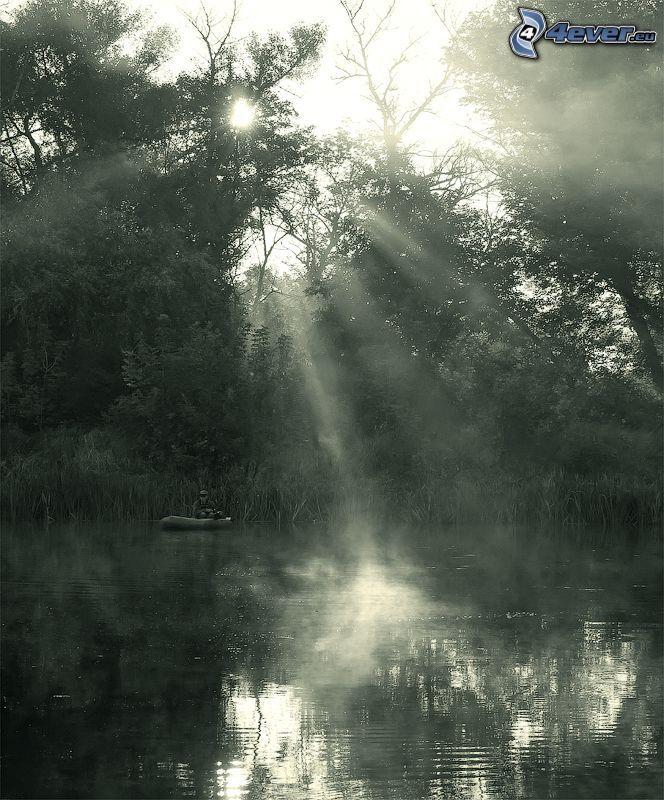 jezioro, rybak, łódka, drzewa, promienie słoneczne, czarno-białe