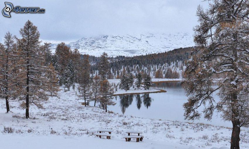 jezioro, śnieżny krajobraz, zaśnieżone, ławki