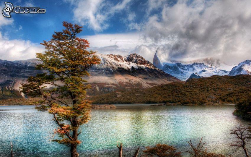jezioro, zaśnieżone góry, jesienne drzewo