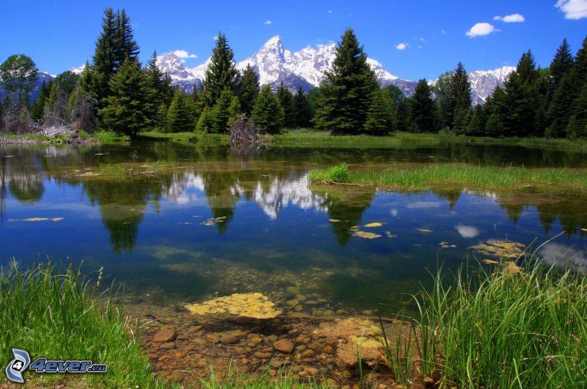 jezioro w lesie, zaśnieżone góry
