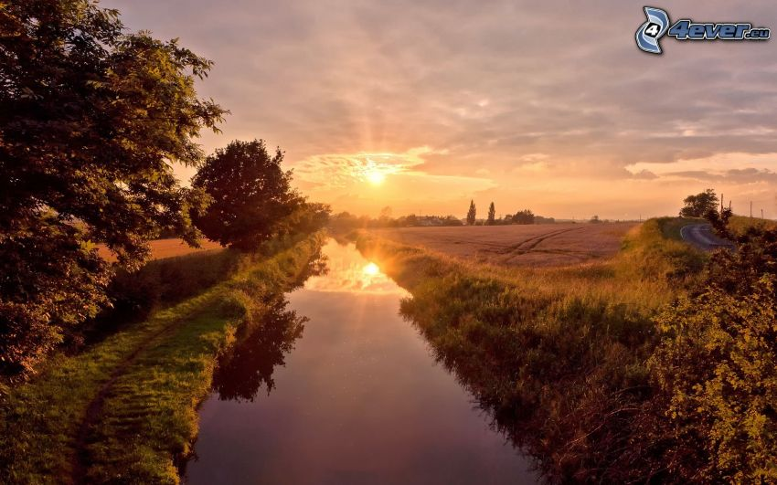 kanał wodny, pola, zachód słońca, drzewa