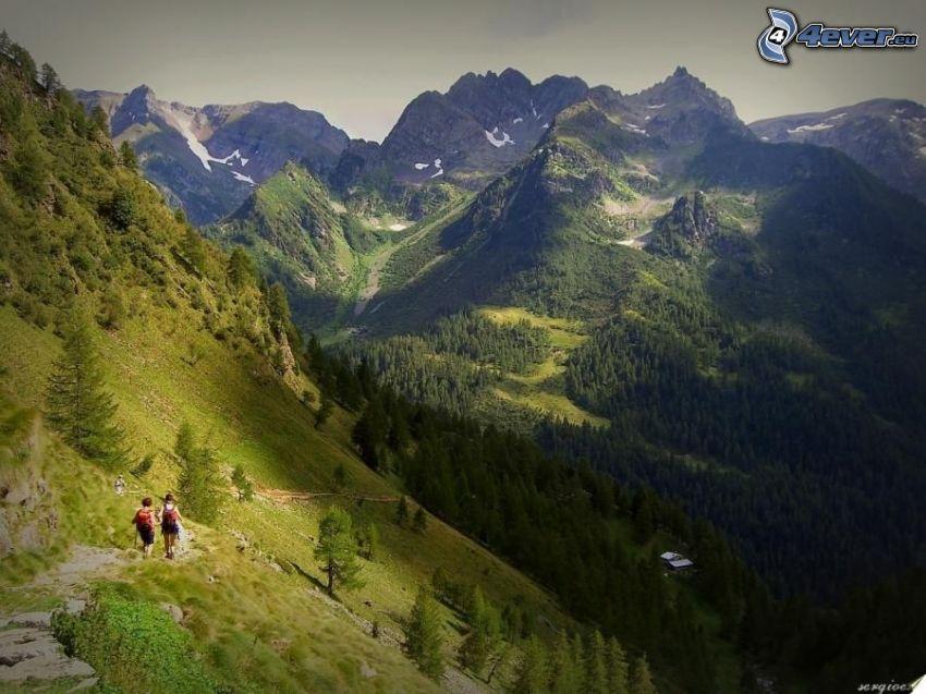 Alpy, Włochy, turystyka, chodnik, góry